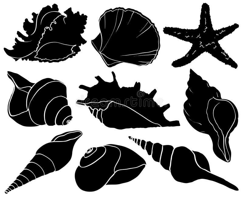 Ustawia z seashells i rozgwiazd sylwetkami, denna mollusk kolekcja ilustracji