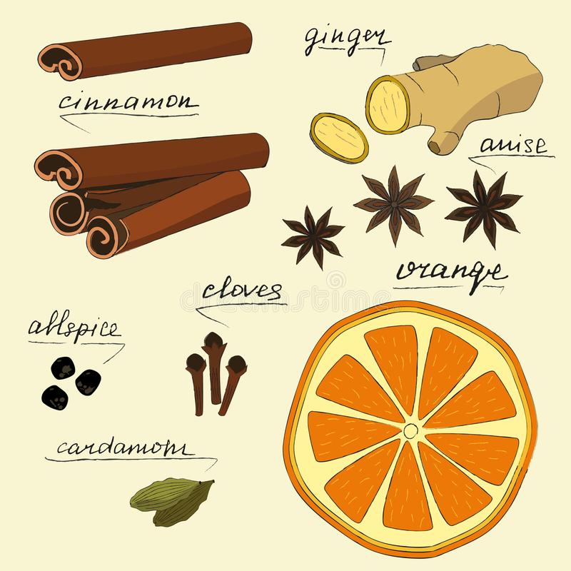Ustawia z wysuszoną pomarańcze, imbirem, kardamonem, goździkowym, cynamon i anyż Kolekcja z pikantnością dla Bożenarodzeniowego w ilustracji