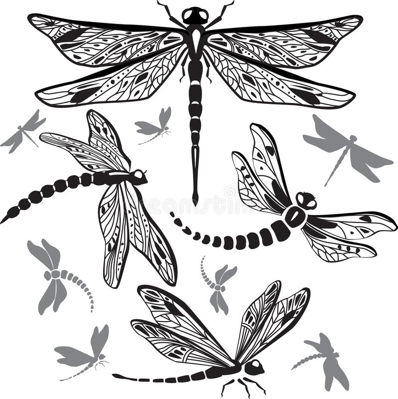ustawiający dekoracyjni dragonflies royalty ilustracja