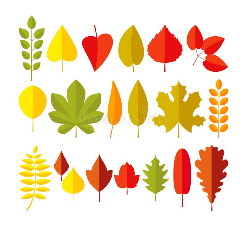 ustawiający jesień liść Prosty spadku liścia kreskówki mieszkania styl odizolowywający na białym tle royalty ilustracja