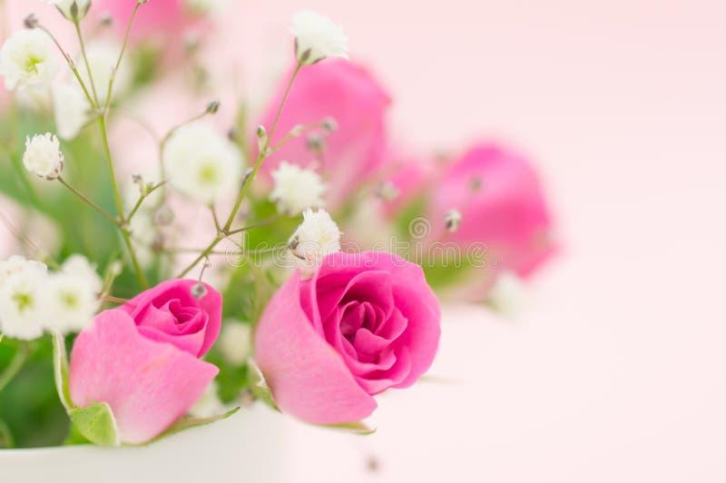 Ustawiony kwiat zdjęcie stock