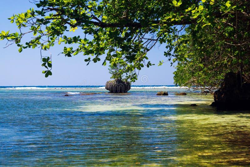 Ustronna błękitna laguna z głazem w morzu blisko Portland, Jamajka fotografia royalty free