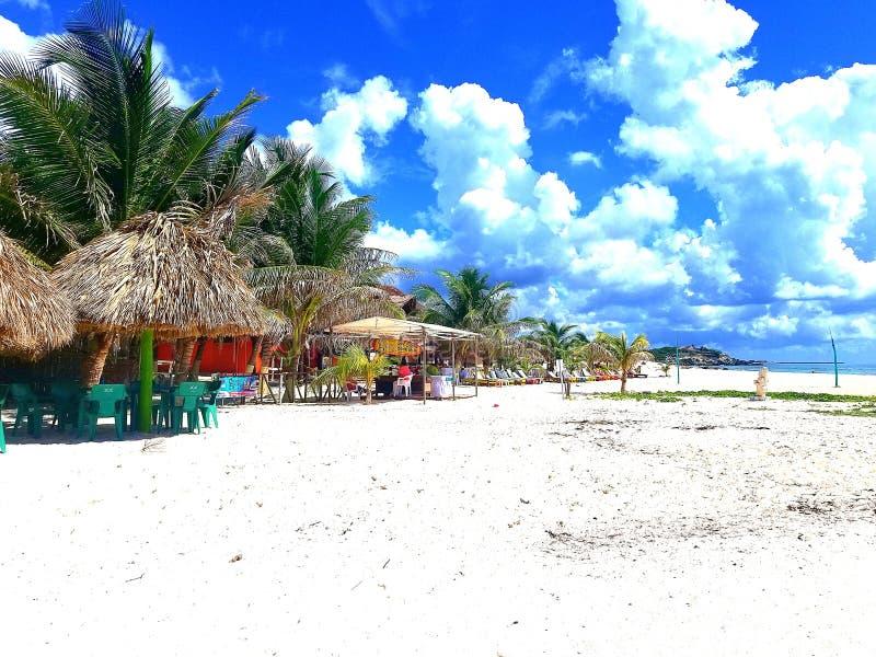 Ustronna plaża w Cozumel Meksyk zdjęcia royalty free
