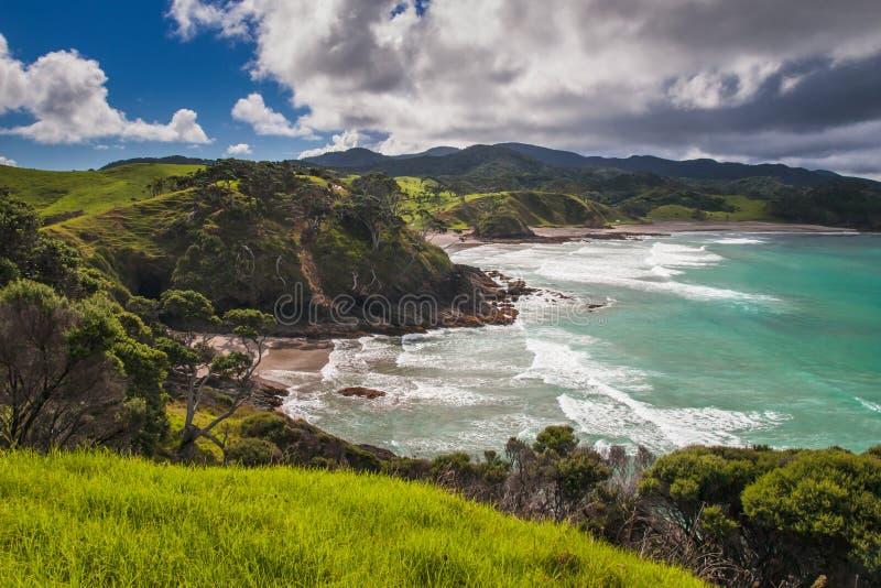 Ustronne plaże w zatoce wyspy, Northland Nowa Zelandia zdjęcie royalty free