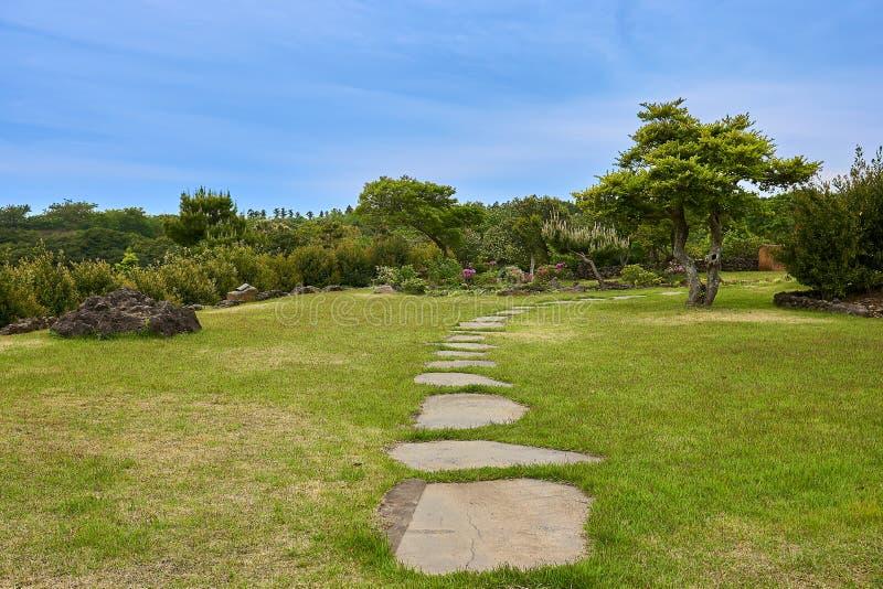 Ustronny teren z skalistymi krokami, trawą i drzewami z niebieskim niebem w Kameliowym wzgórzu Jeju wyspa, Południowy Korea zdjęcie royalty free