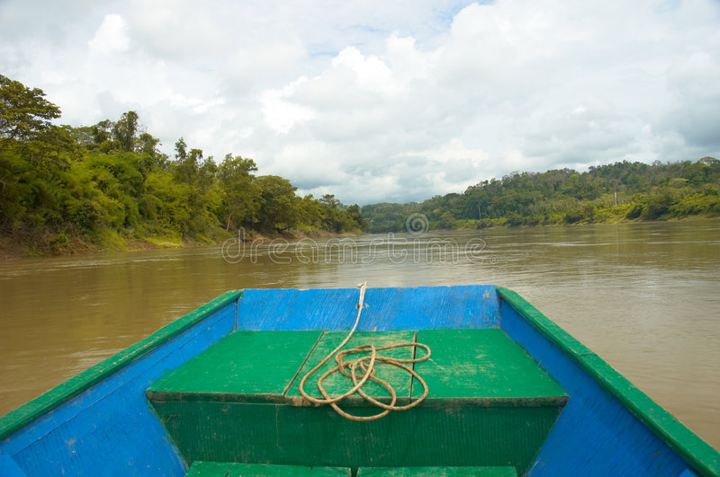 Usumacinta river royalty free stock photos