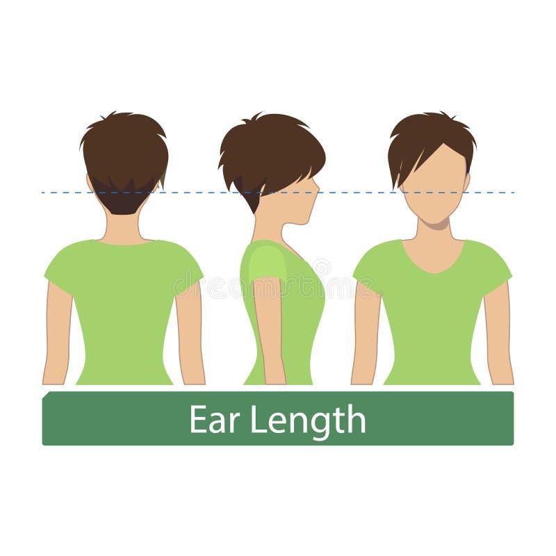 Uszata długość włosy długość ilustracja wektor