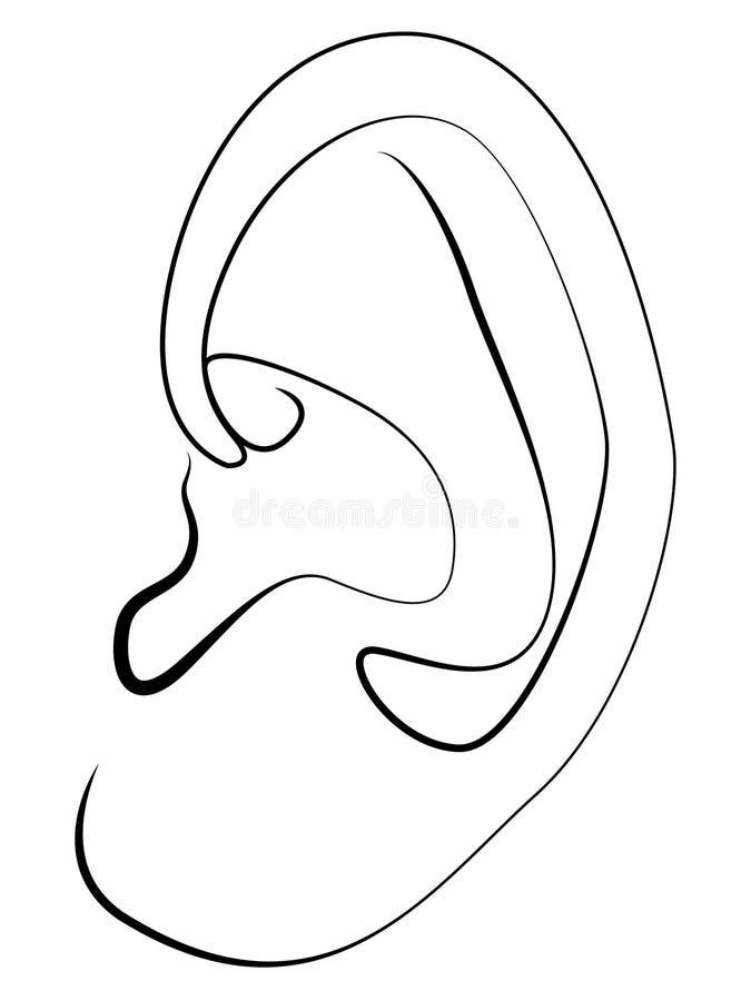 uszaty prosty liniowy rysunek na białym tle ilustracja wektor