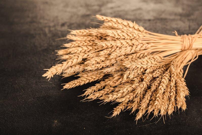 Uszy pszenicy i ziarna na tle ciemnego kamienia obraz royalty free