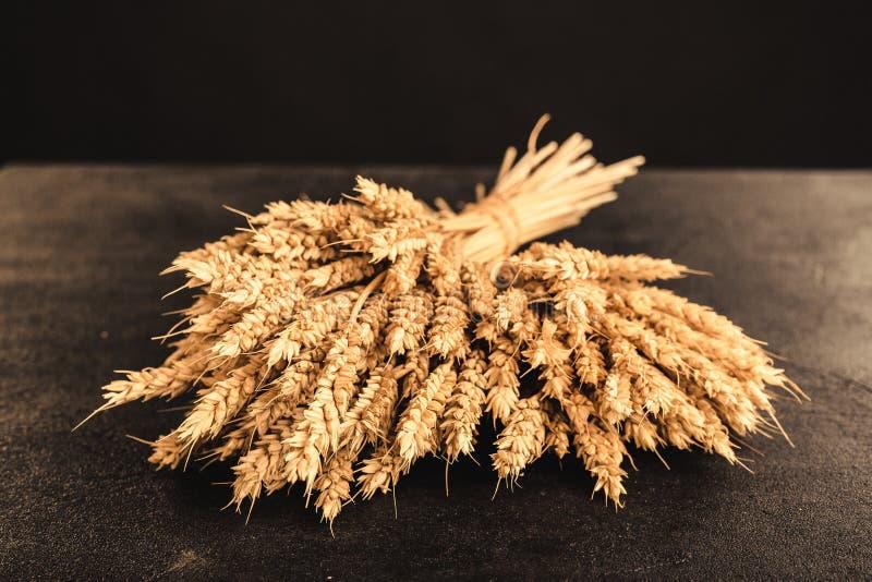 Uszy pszenicy i ziarna na tle ciemnego kamienia zdjęcia royalty free