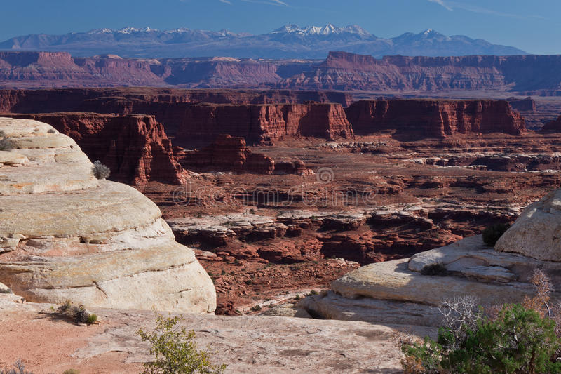 UT-Canyonlands National Pk-White Crack royalty free stock photo