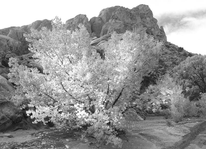 Utah, 2016 Bw (9) Free Public Domain Cc0 Image