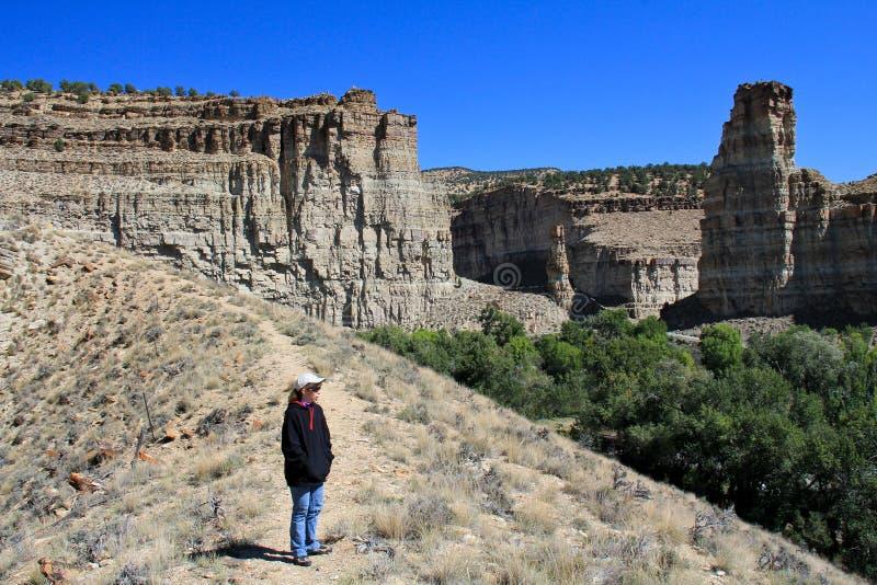 Download Utah: Day hiking stock image. Image of female, tower - 26525925