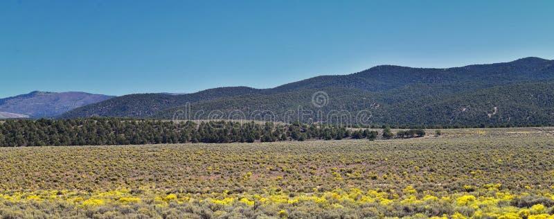 Utah Rocky Mountain Wasatch Panoramic Landscapes door Fishlake National Bos, langs 15 I-15 Tusen staten, door Holden, Fillmore, royalty-vrije stock foto's