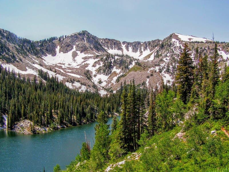 Utah-Schlucht-Wanderweg in Richtung zu den Wasatch-Bergen stockfotografie