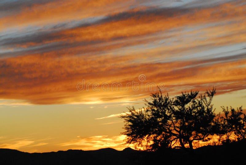 Utah usa Oszałamiająco Piękny Pustynny zmierzch obrazy royalty free