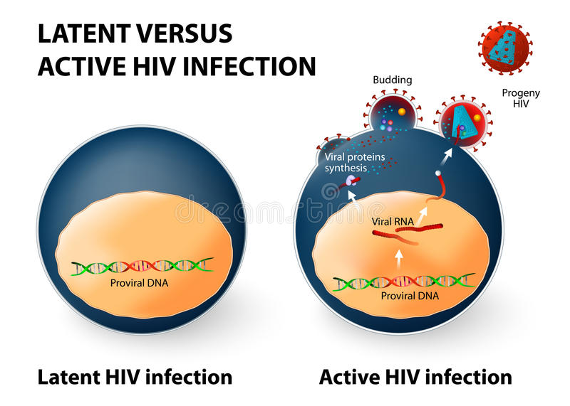 Utajony i aktywny zakażenie wirusem hiv royalty ilustracja