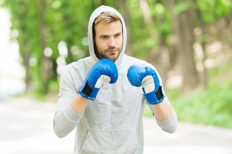 Utbildning för stor dag Manidrottsman nen på koncentrerad framsida med sporthandskar som öva boxas stansmaskin, naturbakgrund arkivbilder