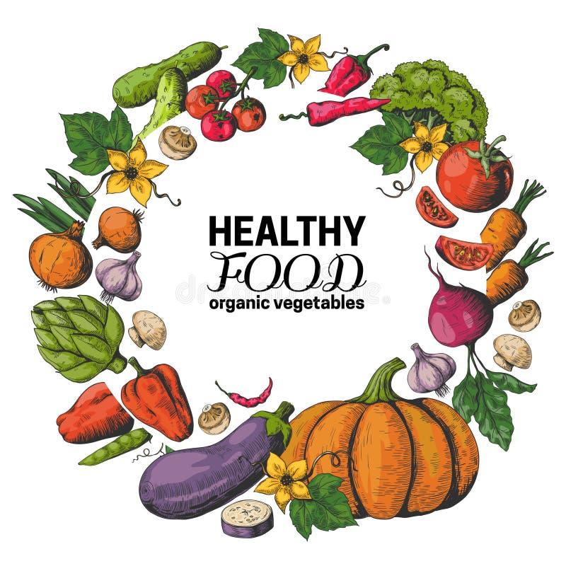 Utdragen grönsakram för hand Ny organisk mat, strikt vegetarianträdgårdmenyn, vård- affisch för eco med skissar grönsaker vektor vektor illustrationer
