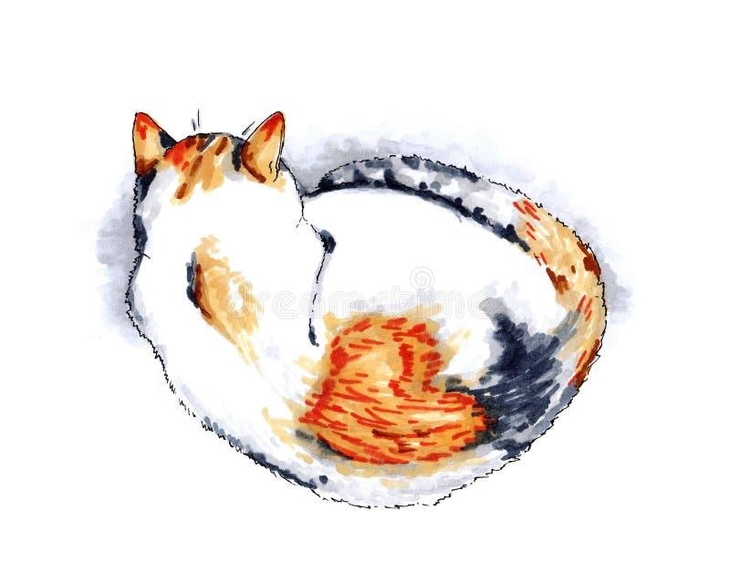 Utdragen illustration för hand av en sova tricolor katt med en hjärta på dess baksida vektor illustrationer