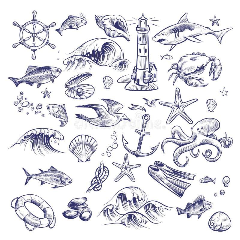 Utdragen marin- uppsättning för hand Samling för livboj för skal för krabba för fnuren för sjöstjärna för bläckfisk för krabba fö stock illustrationer
