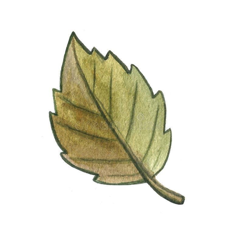 Utdragen vattenfärgillustration för hand av en bladekollonchampinjon på vit bakgrund Höstnedgångväder Sk?rd arkivbild