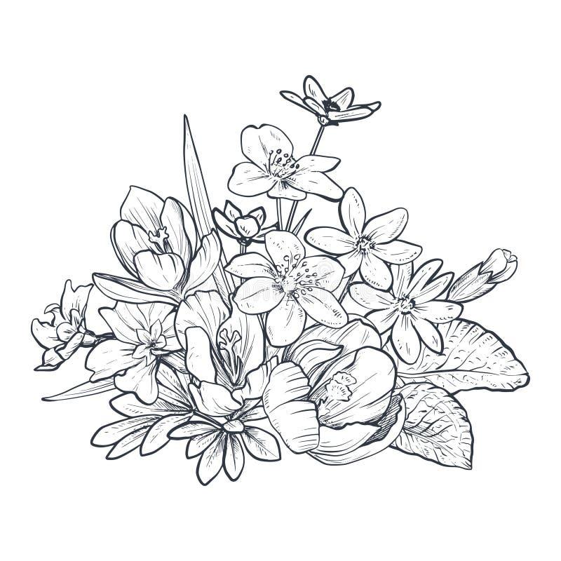 Utdragen vektorbukett för hand av vårblommor och sidor på vit bakgrund vektor illustrationer