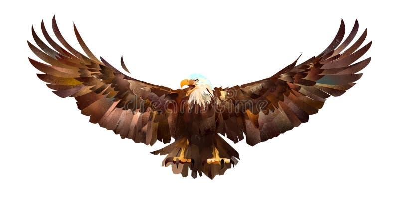 Utdraget skissa den kulöra örnen på en vit bakgrund royaltyfri illustrationer