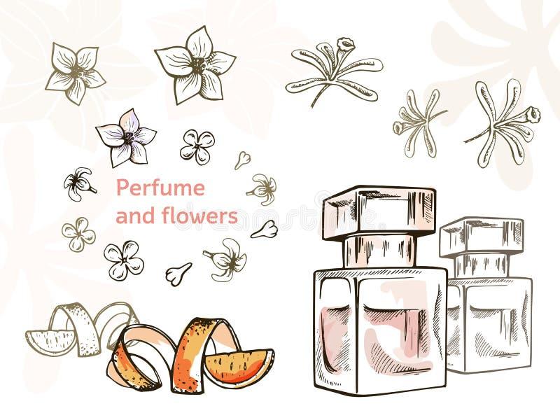 Utdragna illustrationer för hand - doftflaska och blommor stock illustrationer