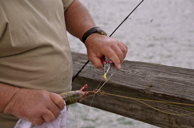 Utdragning av kroken från en fisk arkivfoton