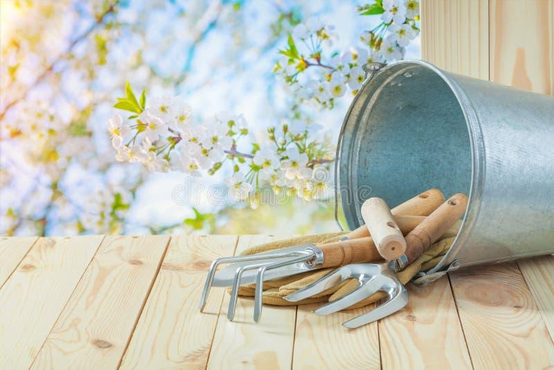 Utensili per giardinaggio a composizione agricola, a secchio, su tavolo fotografia stock libera da diritti