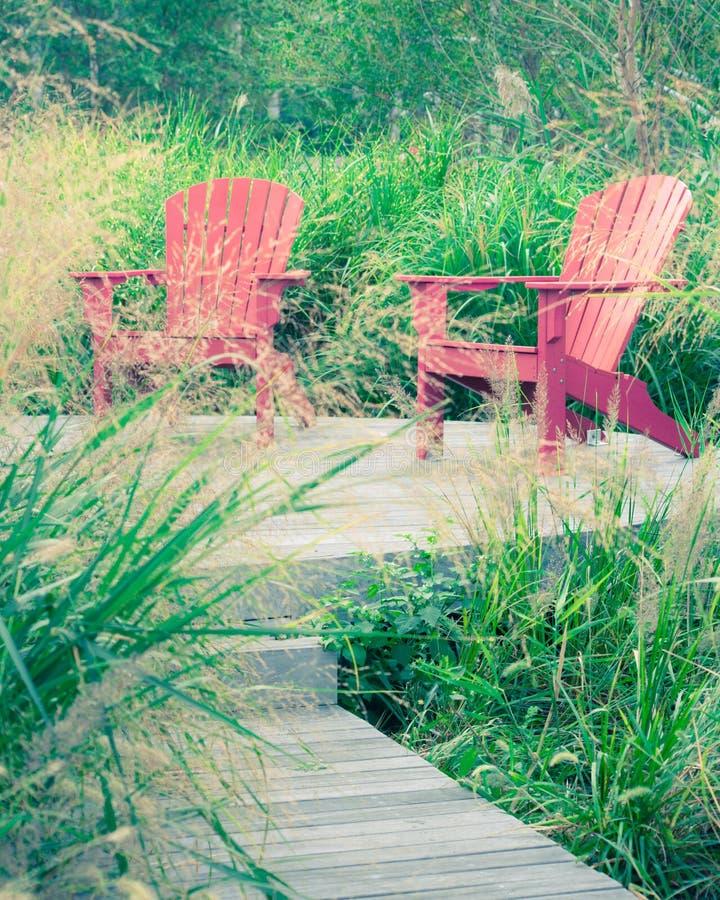 Uteplatsstolar och gräs arkivfoto