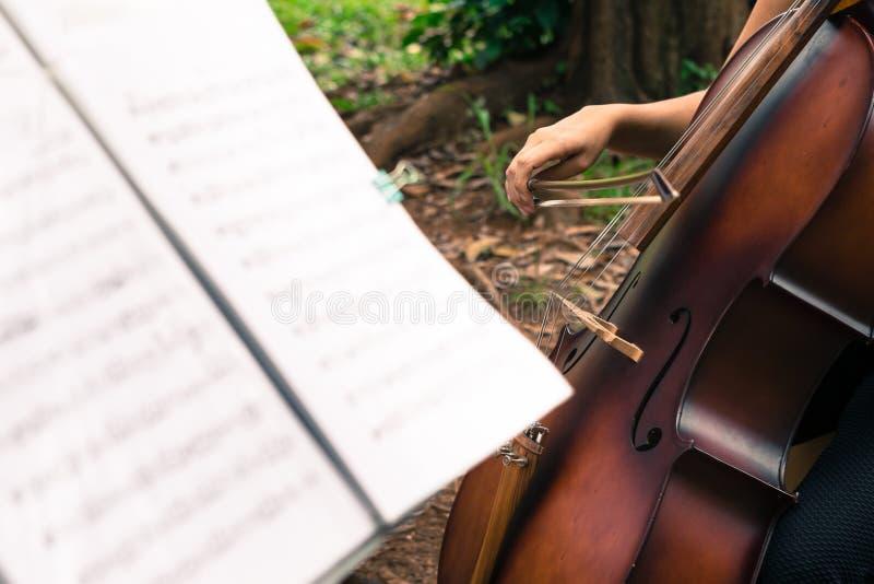 Utföra för cellist royaltyfri bild