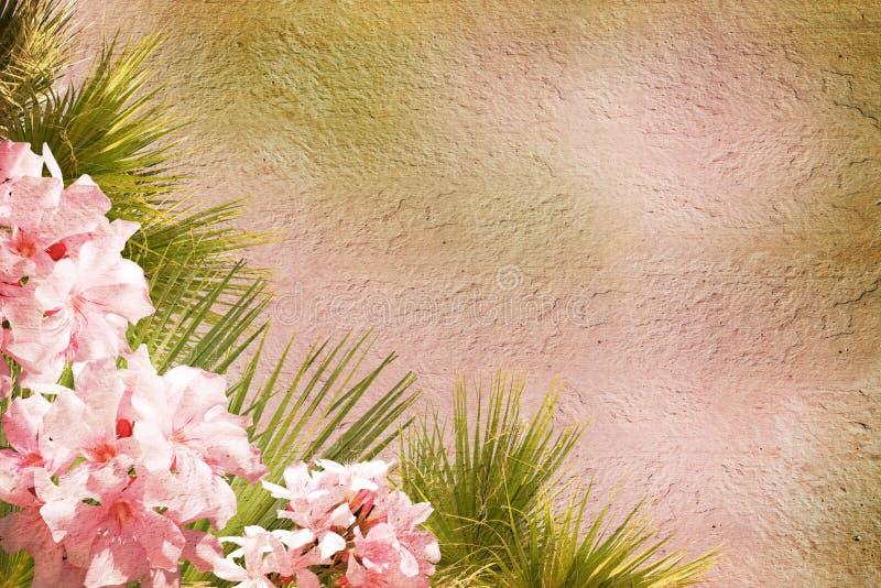 utformad blom- ram royaltyfria foton