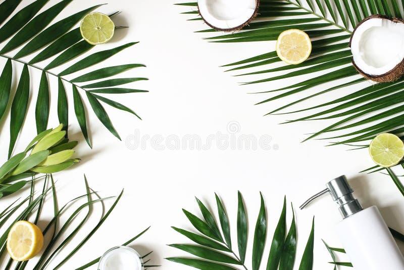 Utformad skönhetram, rengöringsdukbaner Flå kräm, tvålflaskan, kokosnöten, citroner och limefruktfrukt på frodiga palmblad vitt arkivbild