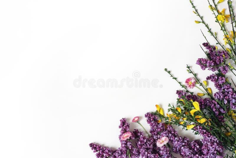 Utformat materielfoto Botanisk plats för vår, blom- sammansättning Dekorativt baner, hörn som göras av purpurfärgad lila, gult royaltyfria bilder