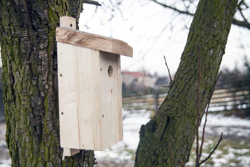 Utgjutit för fåglar på träd Trävoljär på trädet arkivbild