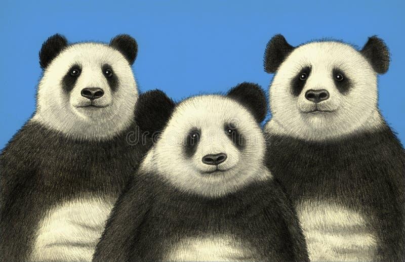 uthärdar panda tre vektor illustrationer