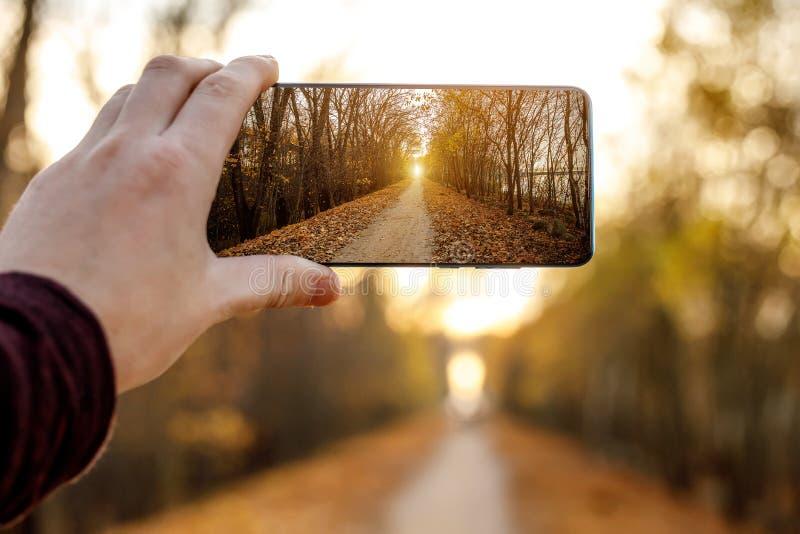 Utilisation d'un téléphone mobile Photo d'une ruelle d'automne photographie stock libre de droits