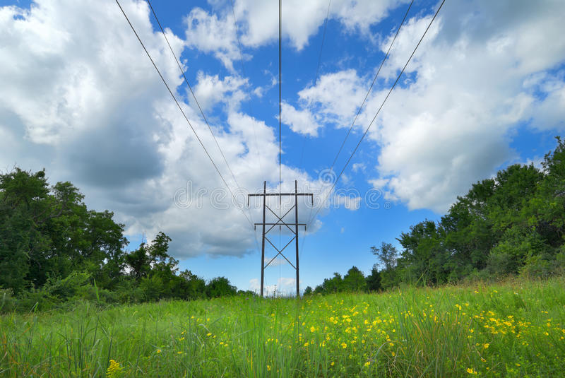 Utility Lines in Pasture stock images
