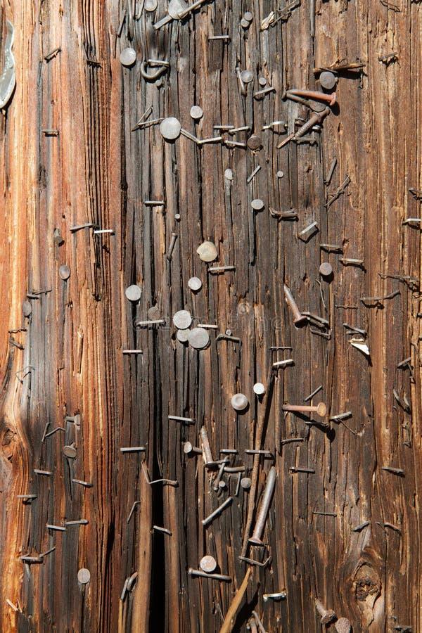 Free Utility Pole Nails Vertical Stock Photos - 17285853