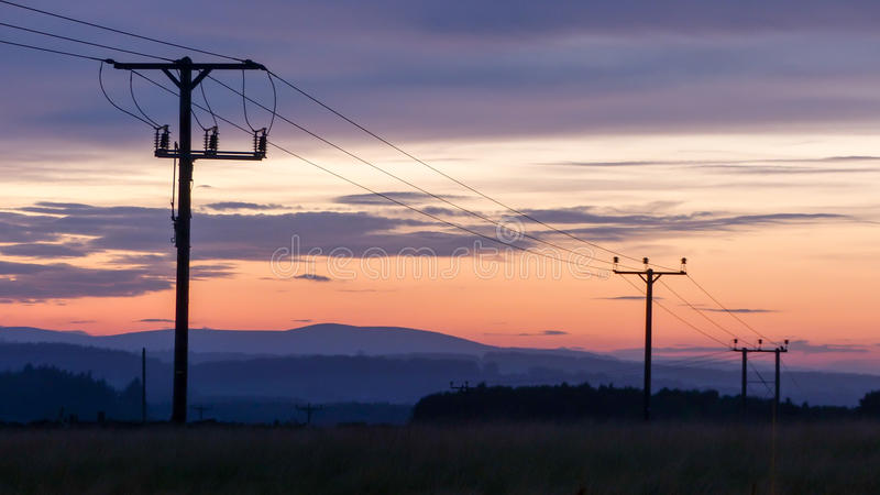 Utility poles. During late evening royalty free stock photo