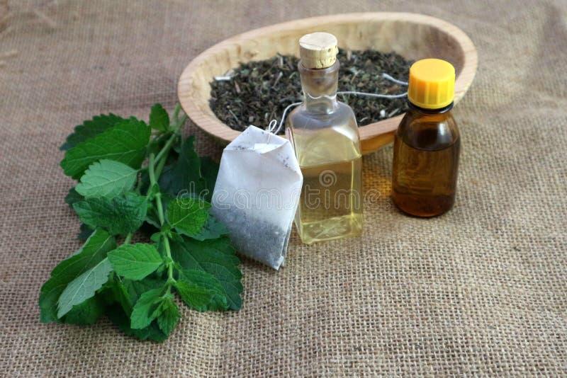 Utilização da erva de Melissa, saquinho de chá, erva-cidreira seco, óleo de melissa e garrafa com essência foto de stock royalty free