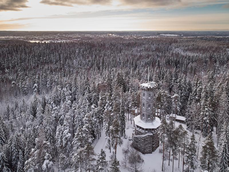 Utkiktorn i vinterlandskap arkivfoto
