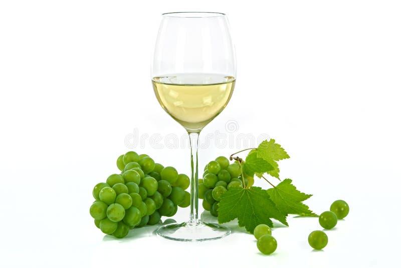 Utmärkt vinglas av vitt vin royaltyfri foto