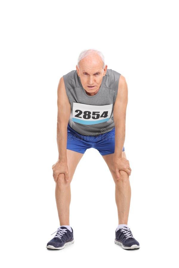 Utmattad hög löpare på vit bakgrund royaltyfri foto