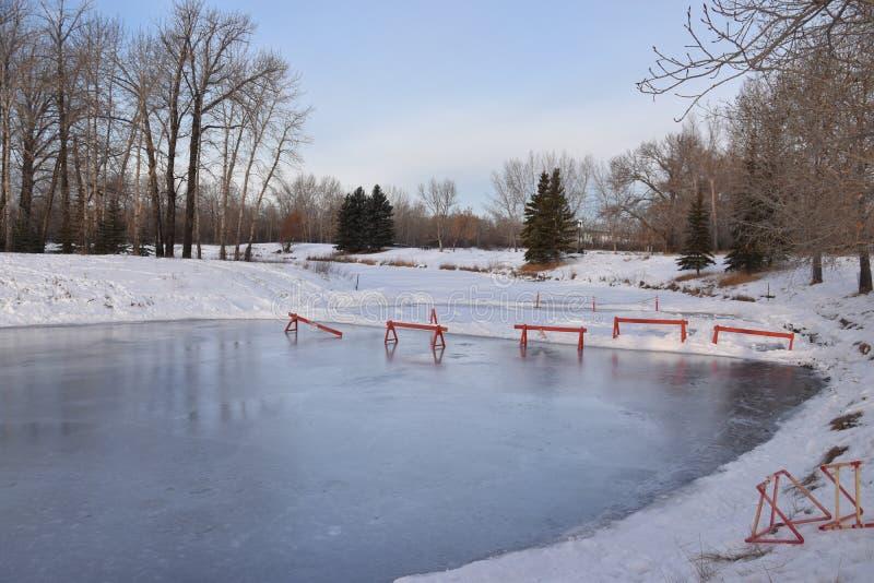 Utomhus- åka skridskor isbana på dammet fotografering för bildbyråer