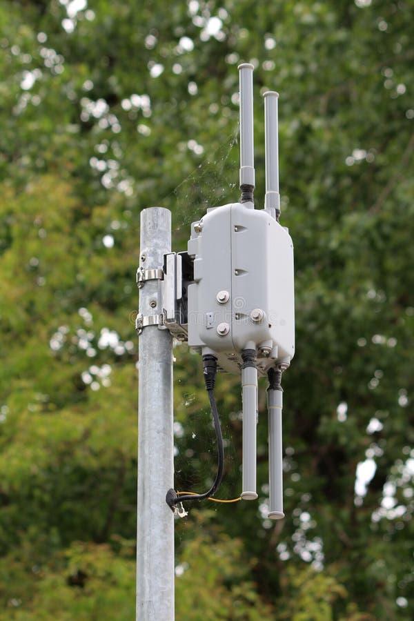 Utomhus- accesspunkt Wi-Fi med fyra antenner som monteras på den starka metallpolen som täckas delvist med spindelnät på täta trä arkivfoto