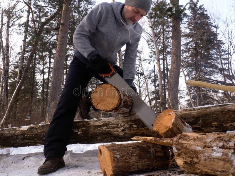 Utomhus- aktiviteter: en man sågar trä i en skog för en brand Ordning av ett tältläger arkivfoto