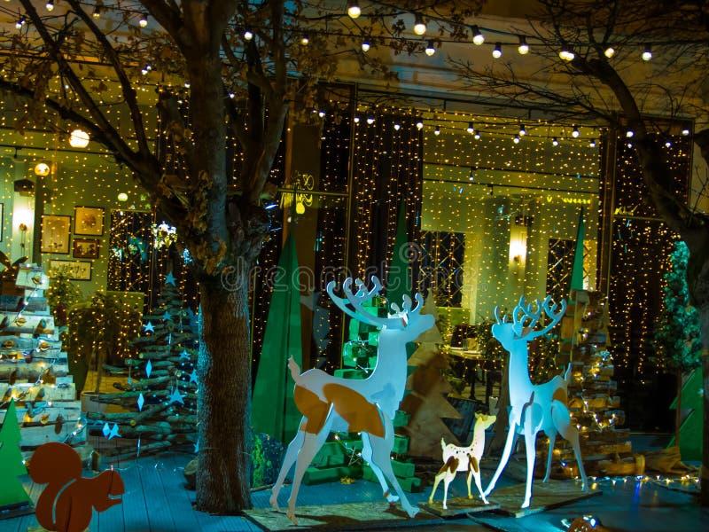 Utomhus- dekor för jul och för nytt år arkivbilder